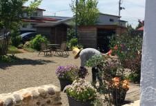 庭の手入れをするスタッフ