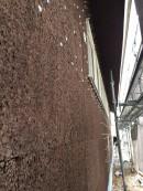 漆喰の壁工程③炭化コルク